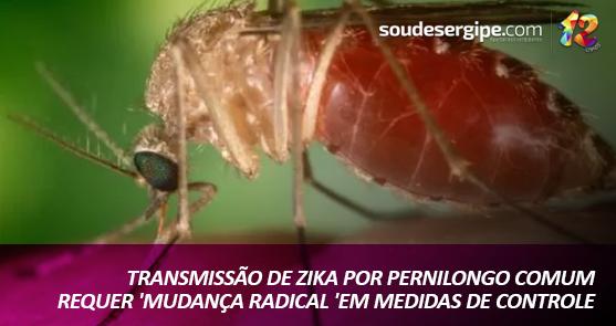 Pesquisa encontrou pela 1ª vez mosquitos Culex carregando vírus da Zika (Foto: Wikimedia Commons)