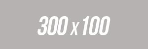 300x100