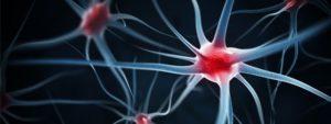 Porque a fibromialgia dói?